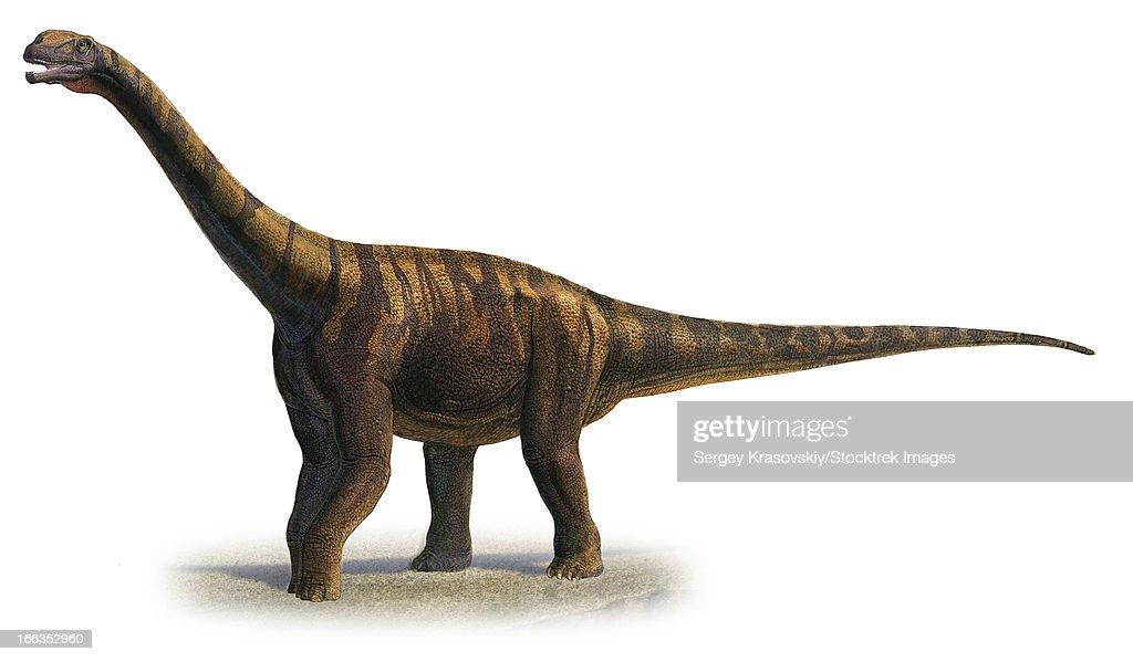 Resultado de imagen de abrosaurus