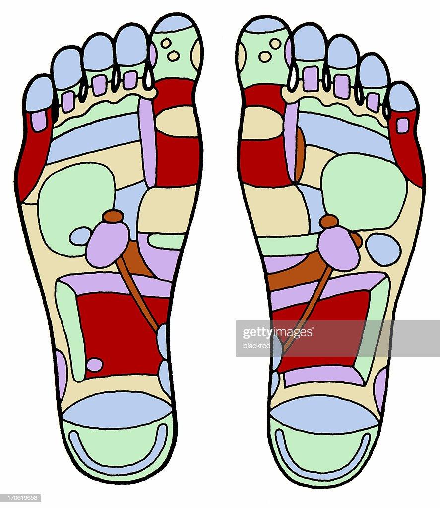 Aged Foot Massage Diagram Stock Illustration