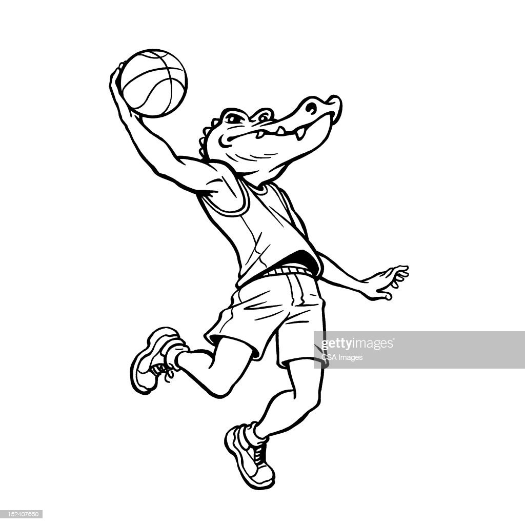 Alligator Jumping With Basketball : Stock Illustration