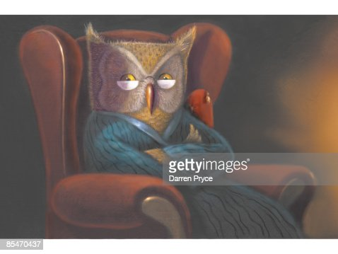 an owl with glasses in a robe with arms crossed in an armchair stock illustration