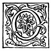 Illustration excerpt from 'The Works of Tennyson' by Lord Alfred Tennyson, Poet Laureate. First published in 1875, it contains a collection of his Poetry. Here we see an illustration of a plant or vin