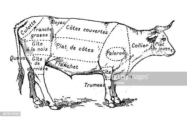 butcher stock illustrations and cartoons