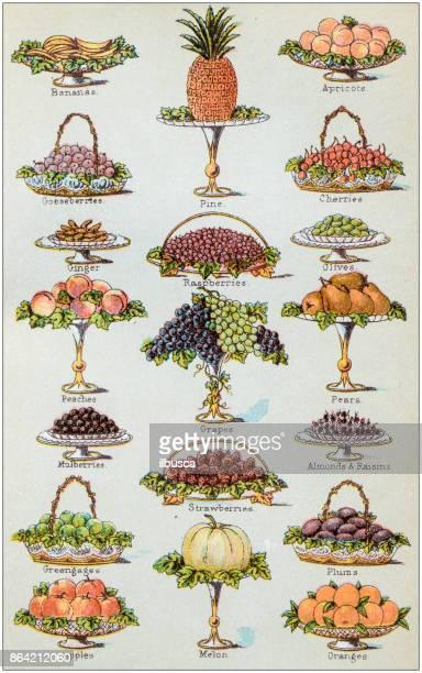 Antique recipes book engraving illustration: Fruit