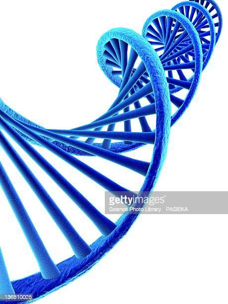 DNA, artwork