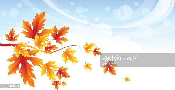 Autumn leaves : Vector Art