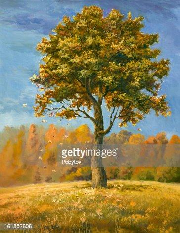 Autumn tree : Stock Illustration