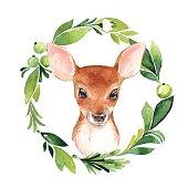 Baby Deer and floral frame. Hand drawn cute fawn. Watercolor illustration