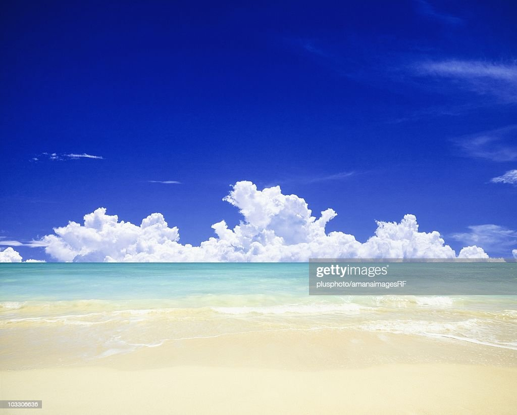 Beach in Oahu, Hawaii, USA : Stock Illustration
