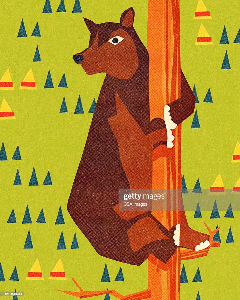 Bear Climbing Tree : Stock Illustration