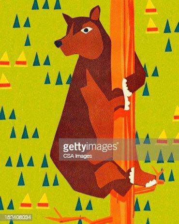 Bear Climbing Tree : Stock Illustration