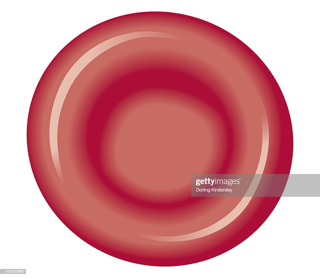 Biomedical illustration of red blood cell : Stock Illustration