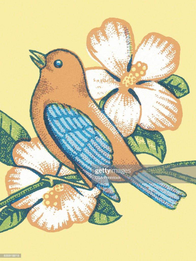 Pássaro e flores : Ilustração de stock