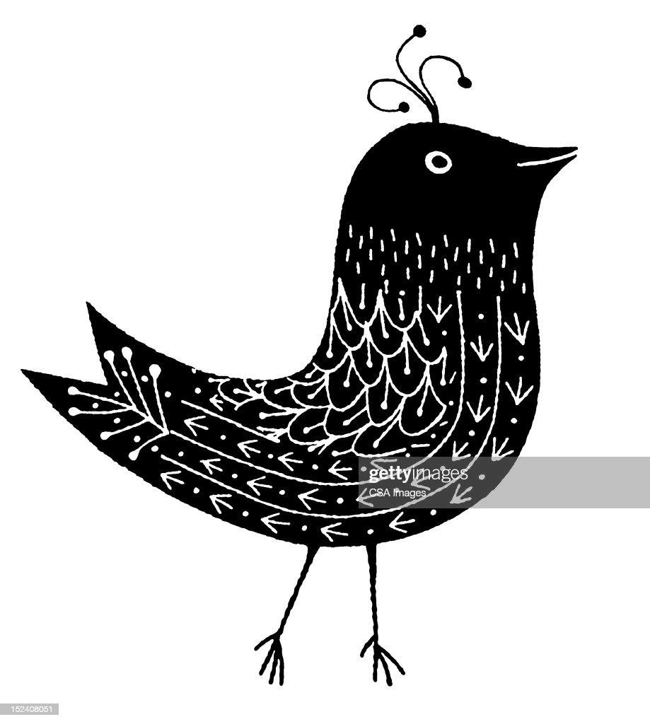 Bird : Stock Illustration