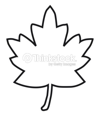 Black And White Digital Illustration Of Maple Leaf Outline ...