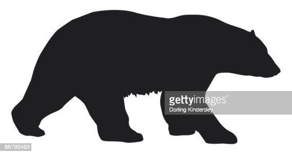 Black and white digital illustration of Polar Bear (Ursus maritimus) : Stock Illustration