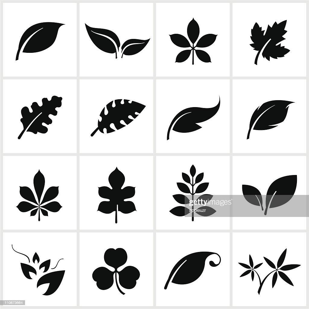 Black Leaf Symbols : Vector Art