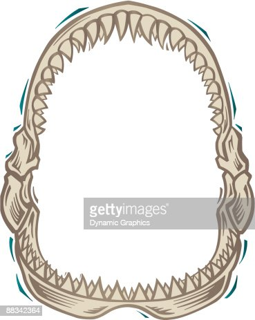 border shark jaws color vector art thinkstock