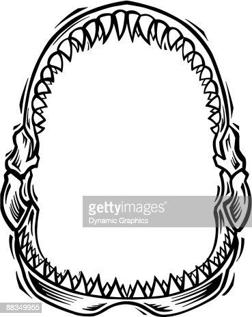 border shark jaws vector art thinkstock