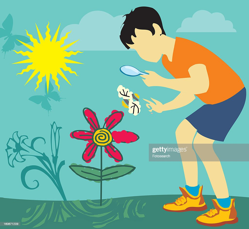Boy looking at butterfly through magnifying glass : Stock Illustration