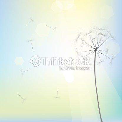 bright dandelion design ストックイラストレーション thinkstock