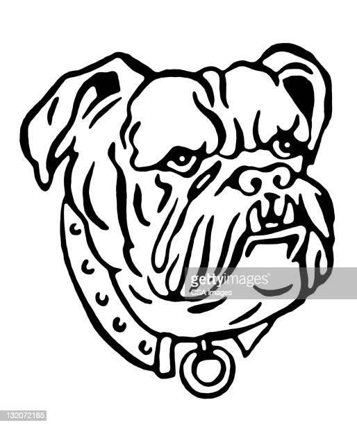 Illustrations et dessins anim s de chien de garde getty - Bulldog dessin anime ...