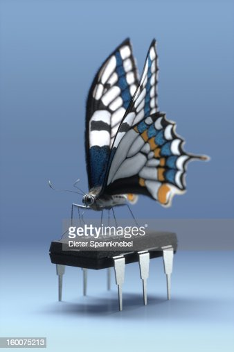 Butterfly standing on a six-legged computer chip : Stock Illustration