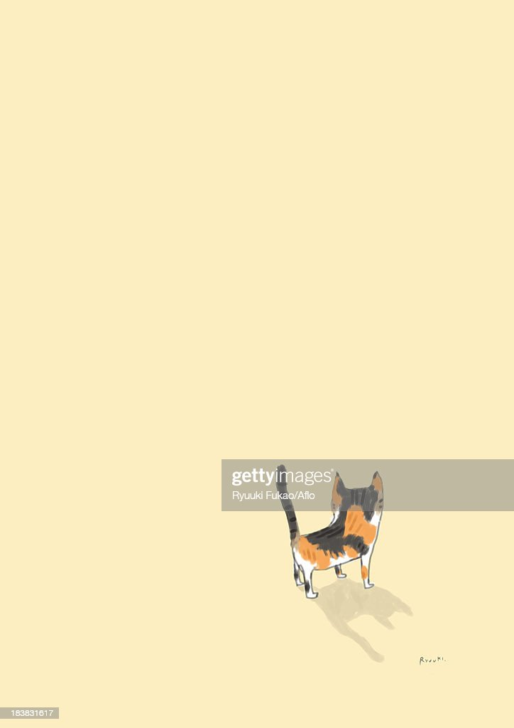 Cat illustration : Stock Illustration