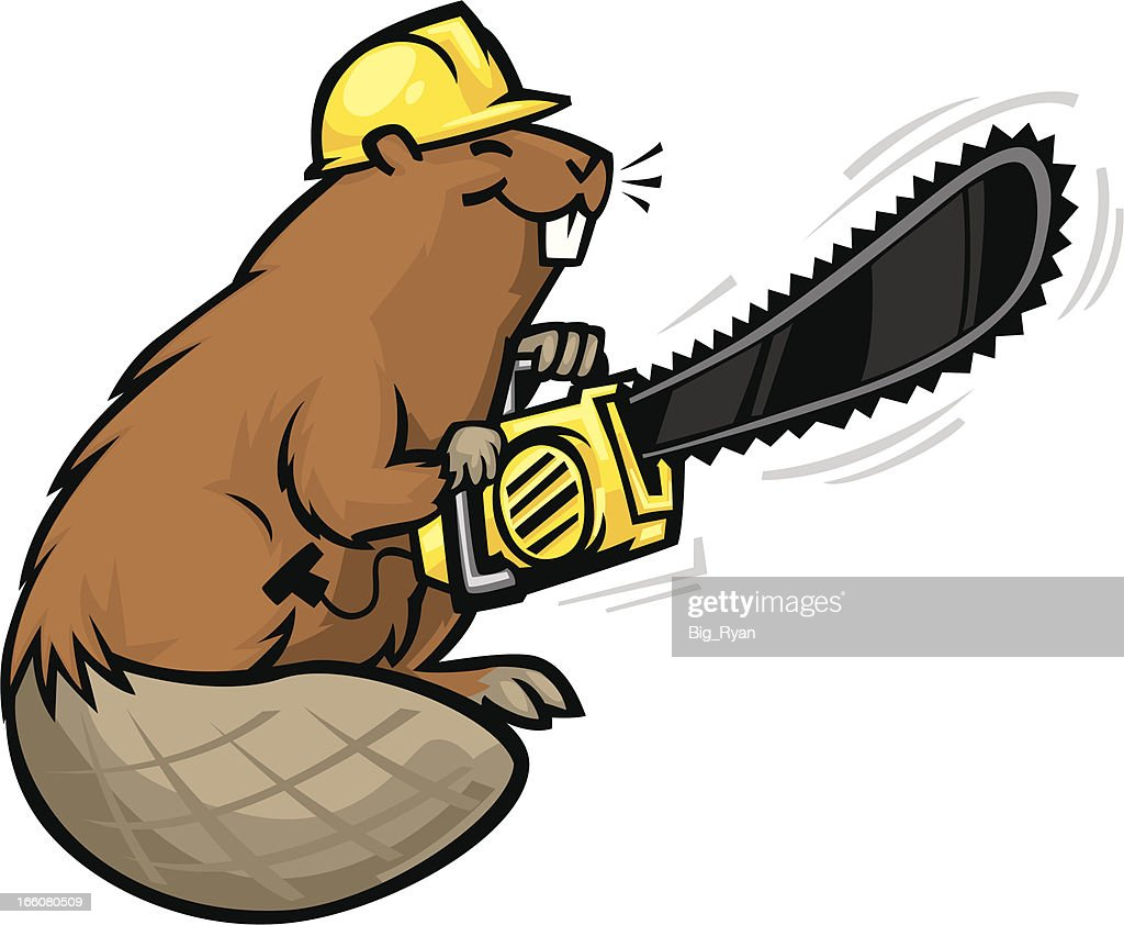 chainsaw beaver vector art getty images