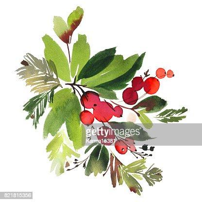 Aquarell Weihnachtskarte mit Fichte und Beeren : Stock-Illustration