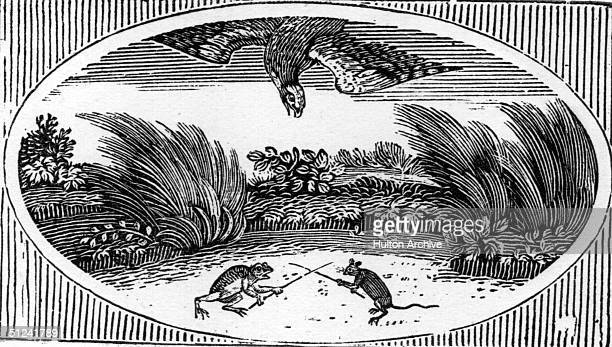 Circa 1750 A woodcut of a hawk diving on a frog and a mouse or rat who are swordfighting
