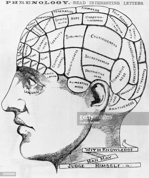 A phrenological crosssection of a man's head illustrating the idea that the brain processes thoughts in different locations according to their type