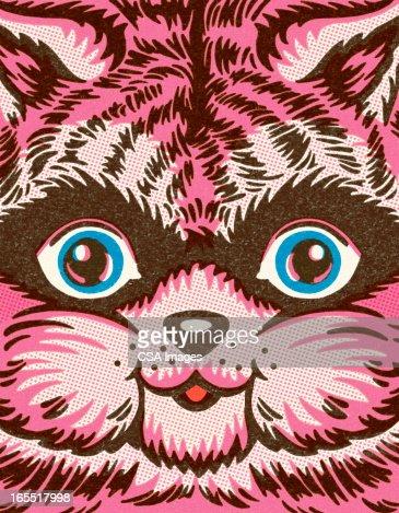 Closeup of a Cat : Stock Illustration