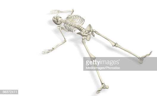 closeup of a human skeleton lying down stock illustration | thinkstock, Skeleton