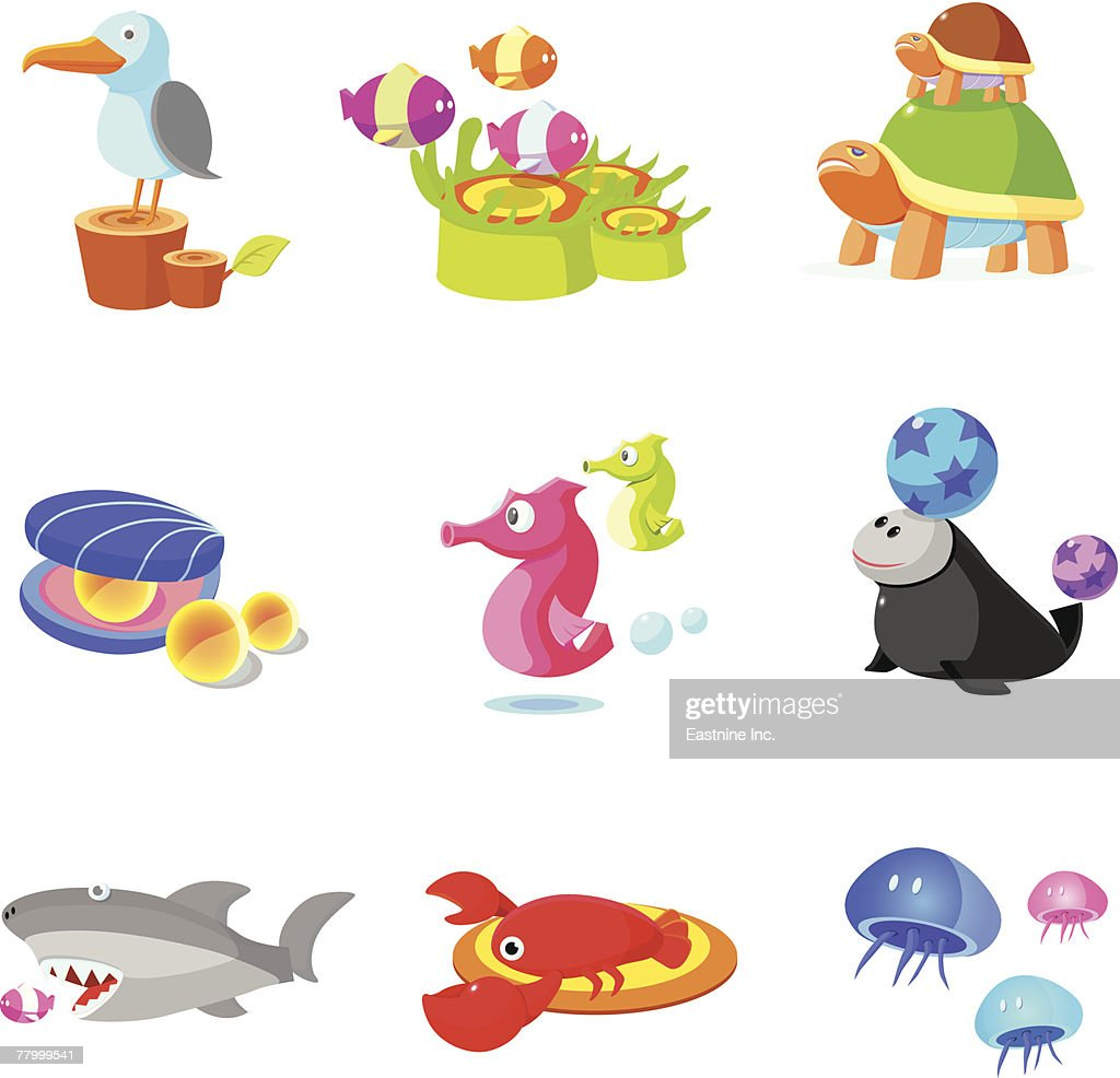 closeup of various aquatic animals vector art getty images