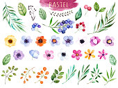 Colorful floral collection with multicolored flowers,leaves,branches,berries and more,Colorful floral collection with 37 watercolor elements.Set of floral elements.Pastel collection