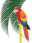 Colorful Parrot, Painting, Illustration
