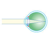 Cross section biomedical illustration of eye focusing on distant object
