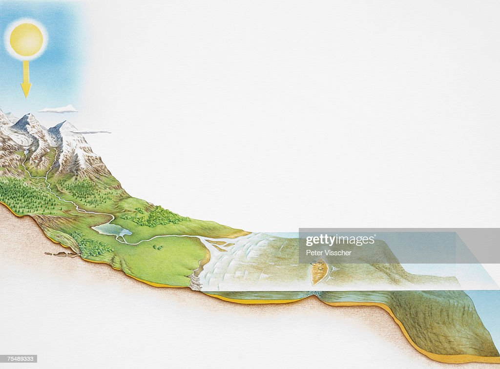 Cross-section diagram illustrating the wide range of habitats and energy movement in the Earth's biosphere : Stock Illustration