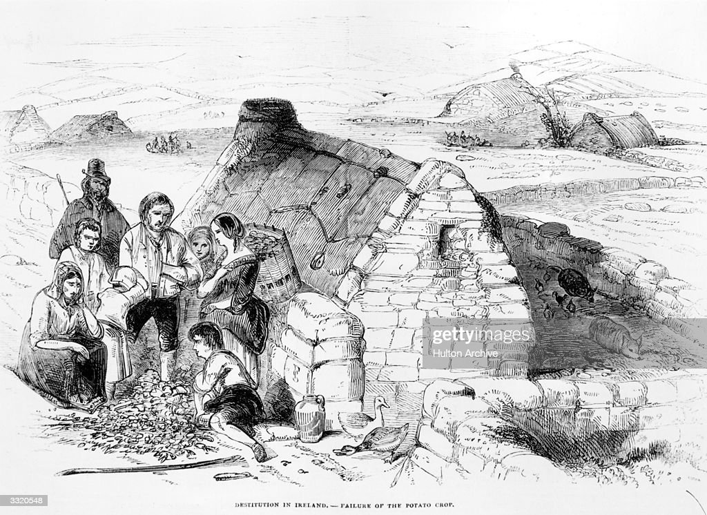 great famine Important and well-conceived    provides a valuable dataset with which to  critically interrogate available historical accounts of the great famine, daily life  for.
