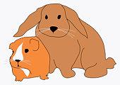 Digital illustration of guinea pig and large rabbit