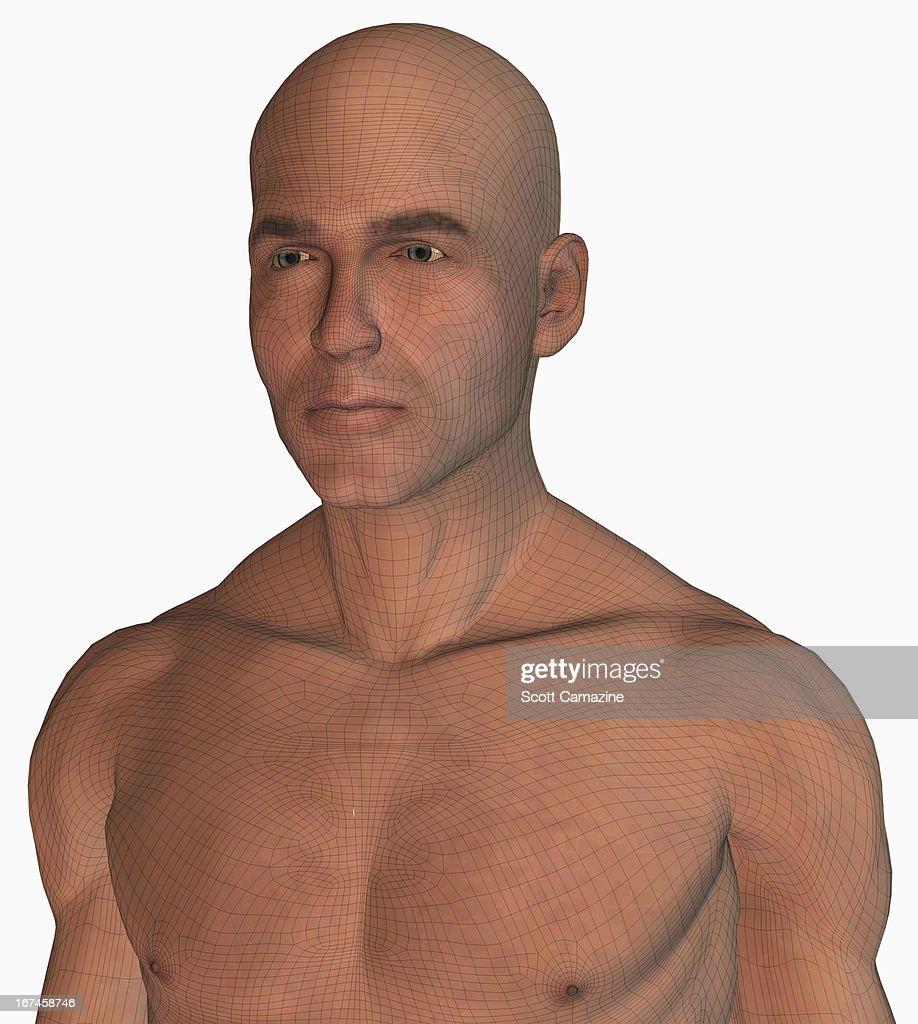 Digitally generated male figure : Stock Illustration