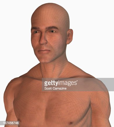 Digitally generated male figure : Stock Illustration