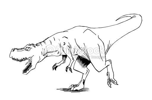 Disegno In Bianco E Nero Di Un Tirannosauro Rex Illustrazione Stock