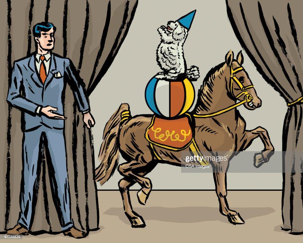 Dog and pony show : Stock Illustration