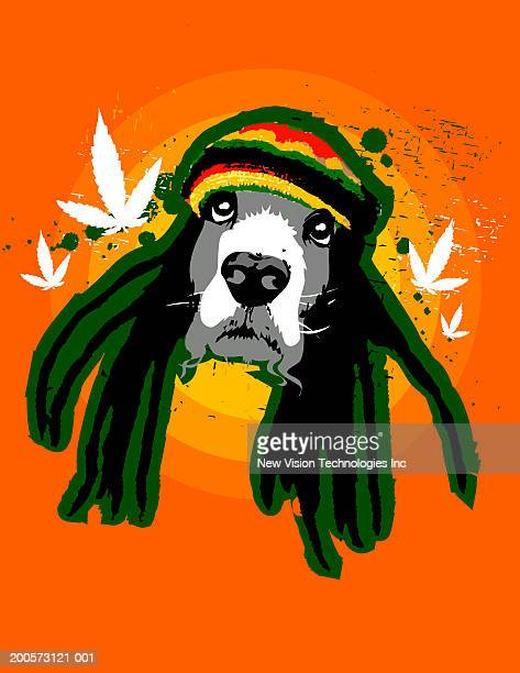 Dog with dreadlocks and hat, marijuana leaves in background