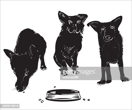 Dogs Near A Bowl : Stock Illustration