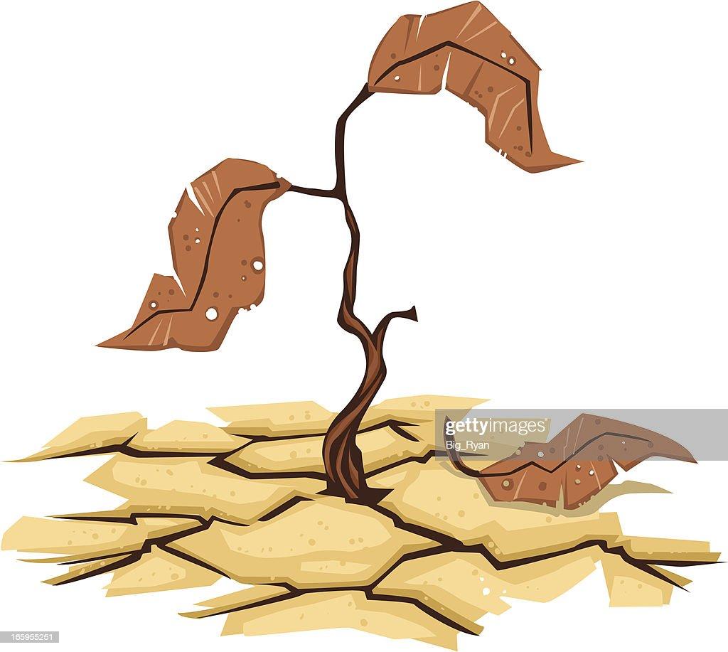 drought vector art getty images dead tree vector image Dead Oak Tree Vector