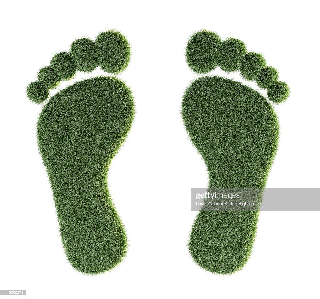 Environmentally friendly grass feet. : Stock Illustration