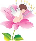 Fairy sitting on flower head