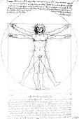 Anatomy art by Leonardo Da Vinci from 1492
